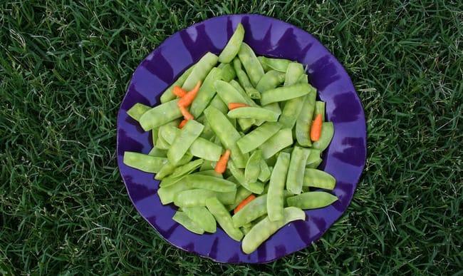 Assiette de pois gourmands et jeunes carottes