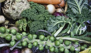 Récolte de légumes d'hiver