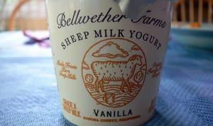 Pot de yaourt au lait de brebis