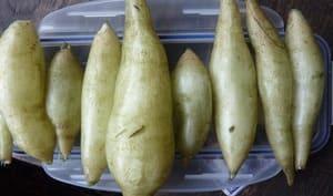 Tubercules de yacon alignés