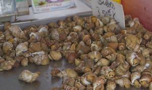 Bulots sur le marché en Normandie