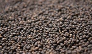 Graines de poivre noir