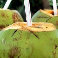 Noix de coco avec une paille