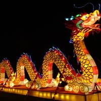 Dragon de lumière