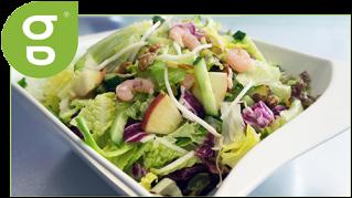 Salat Palm Beach