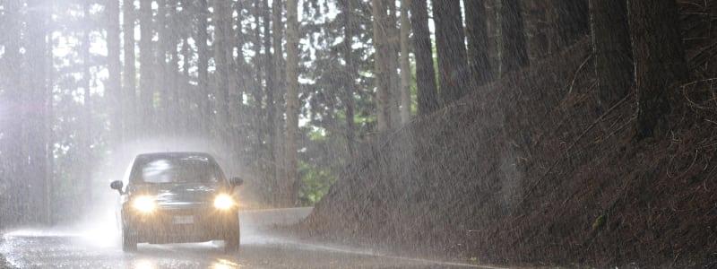 Voiture sous une forte pluie dans la forêt