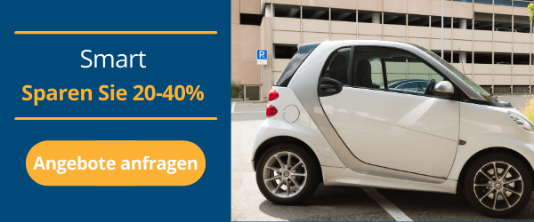 smart Reparatur und Wartung Autobutler