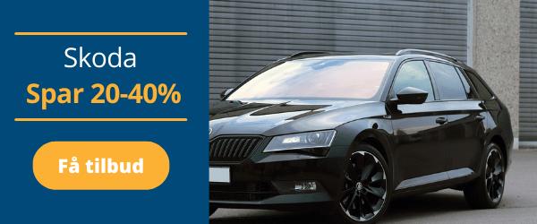 Škoda reparation og service
