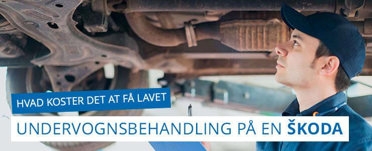 Undervognsbehandling og rustbeskyttelse - Skoda