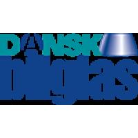 Dansk bilglas logo