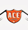 Ace Auto MOT Centre logo
