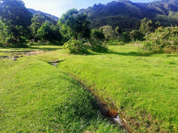 6.12 - Project 2020 - Vanilla - Landscape 02.jpg