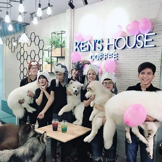 Coffee Shop For Pets In Ho Chi Minh City