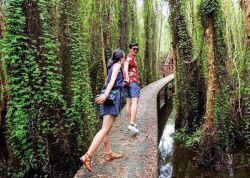 10 Địa Điểm Cắm Trại Đi Về Trong Ngày Tại Sài Gòn (Phần 1)