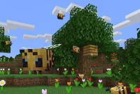 Minecraft's latest Java update 1.15...