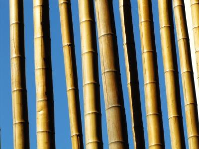 terrassendielen aus bambus die g nstige und robuste. Black Bedroom Furniture Sets. Home Design Ideas