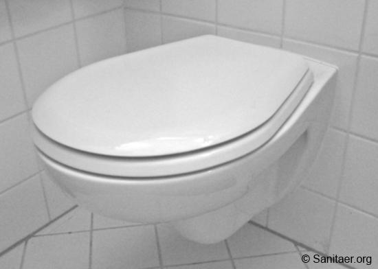 wand wc austauschen cool hange wc austauschen l altes wand wc austauschen with wand wc. Black Bedroom Furniture Sets. Home Design Ideas