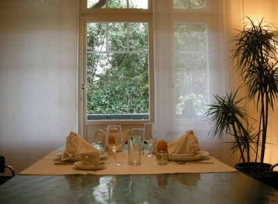 esstisch aus glas berzeugt mit klarem design und funktionalit t. Black Bedroom Furniture Sets. Home Design Ideas