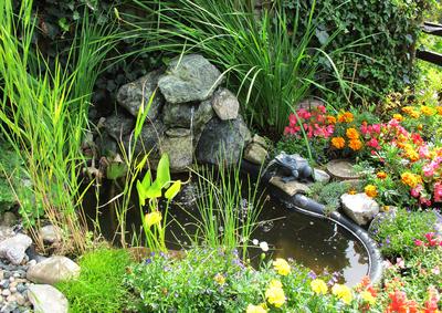 Optimale Gestaltung Kleiner Garten So Klappt S