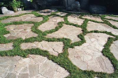 Natursteinplatten Fur Die Terrasse Moglichkeiten Und Techniken