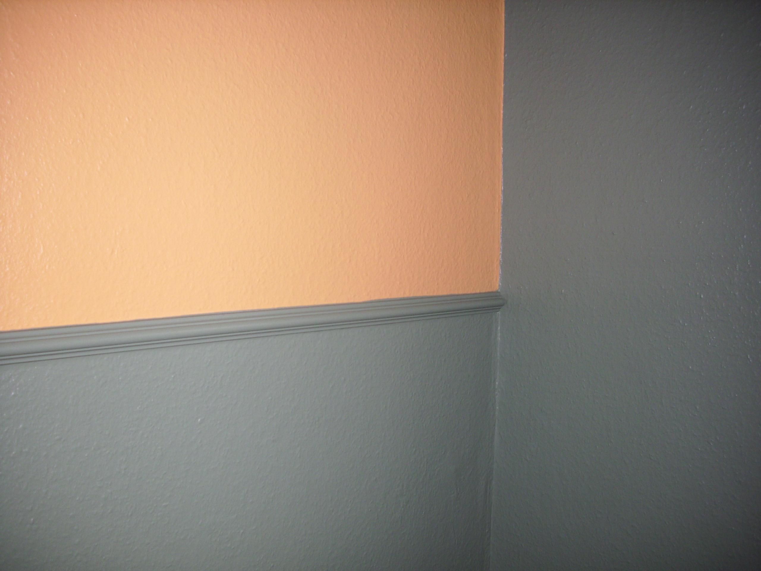 so wird dispersionsfarbe entfernt | maler