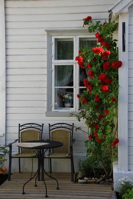Die Verlegung Der Terrassendielen Das Mussen Sie Beachten
