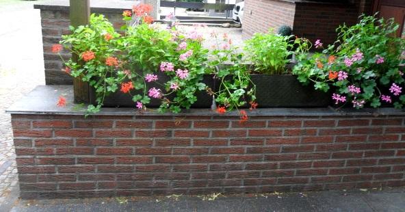 Gartenmauer bauen das m ssen sie beachten - Gartenmauer hang ...