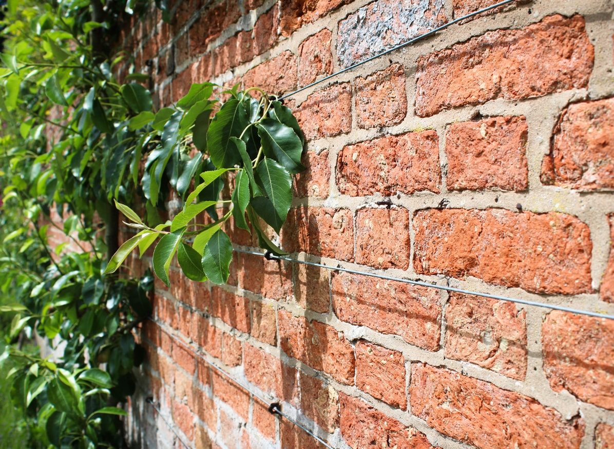 Gartenmauer Trockenmauer Mortelmauer Im Vergleich