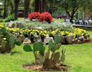 ein mediterraner steingarten ist eine dekorative alternative zur einfachen rasenfl che. Black Bedroom Furniture Sets. Home Design Ideas
