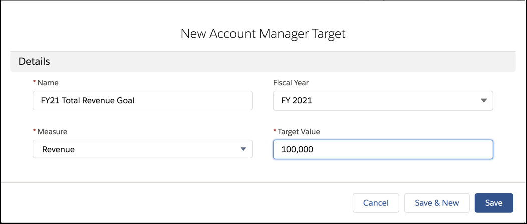 New Account Manager Target record FY21 Total Revenue Goal for the fiscal year FY21, with measure as Revenue and Target Value as 100,000.