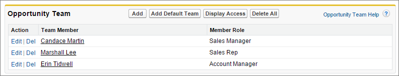 A screenshot of the Opportunity Team related list