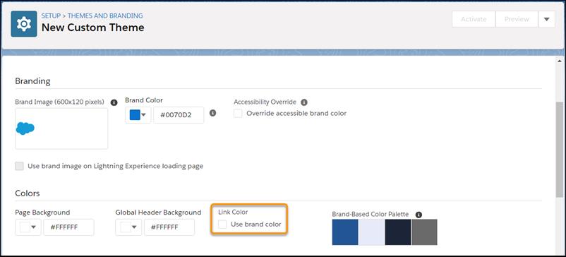 [リンクの色] の [ブランドの色を使用する] チェックボックスが表示されている [新規カスタムテーマ] 設定ページ。