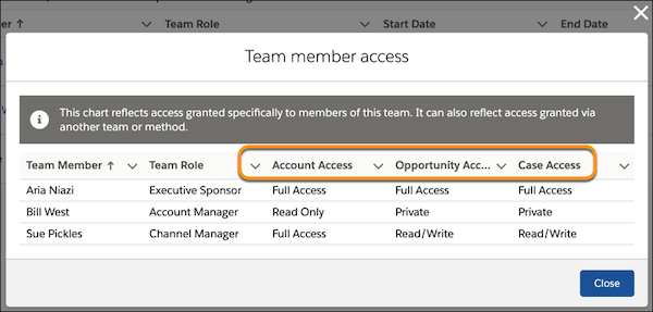 The Team Member Access window for an account, showing each member's access to the account and related opportunities and cases