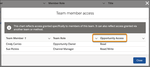 The Team Member Access window for an opportunity
