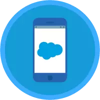 Salesforce Mobile  App Customization badge