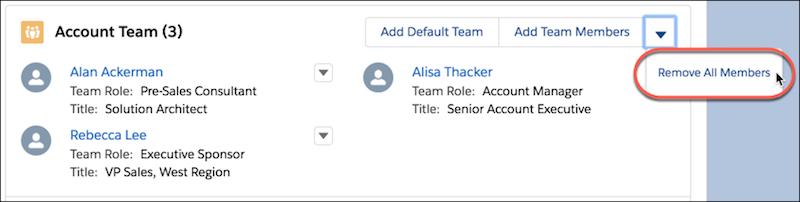 [すべてのメンバーを削除] が強調表示されている [取引先チーム] 関連リスト
