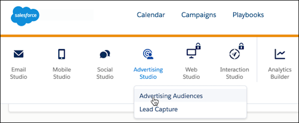 Advertising Studio options: Audiences and Lead Capture