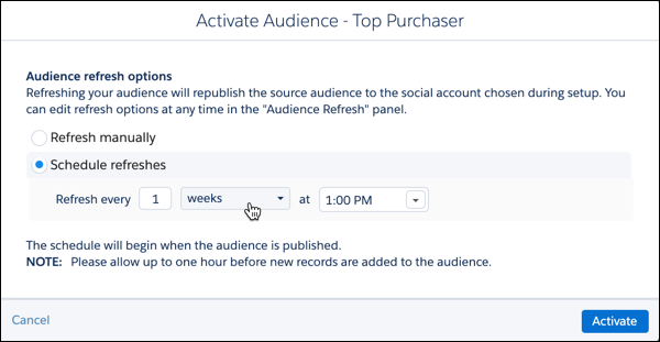 Activate Audience Top Purchasers
