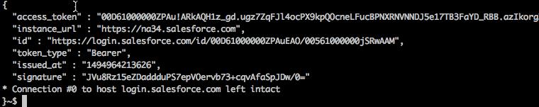 アクセストークンが含まれた cURL 応答