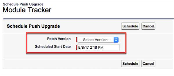 The Schedule Push Upgrade section is where you select a package version and a start date for a push upgrade.
