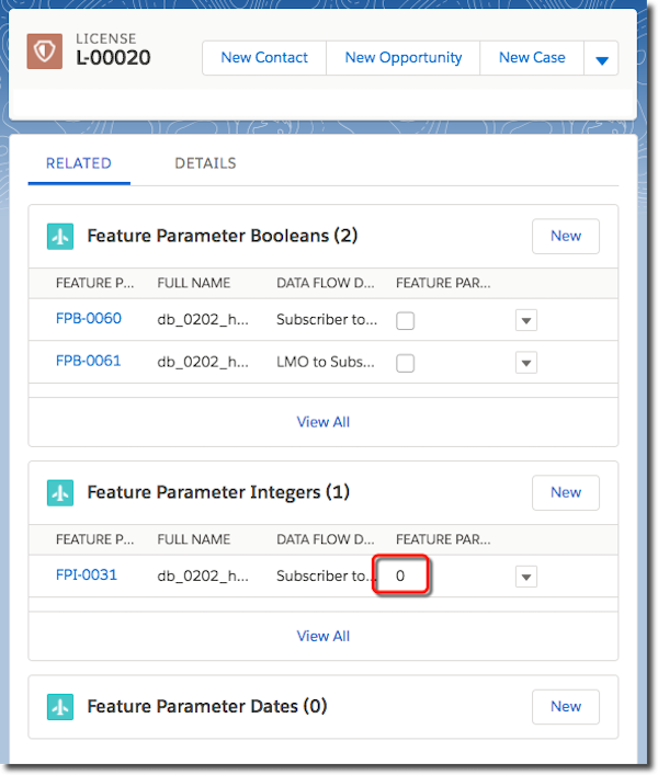 A license record window, where you can view feature parameter values