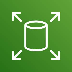 Icon for Amazon EBS, a data volume with arrows pointing outward depicting scale.