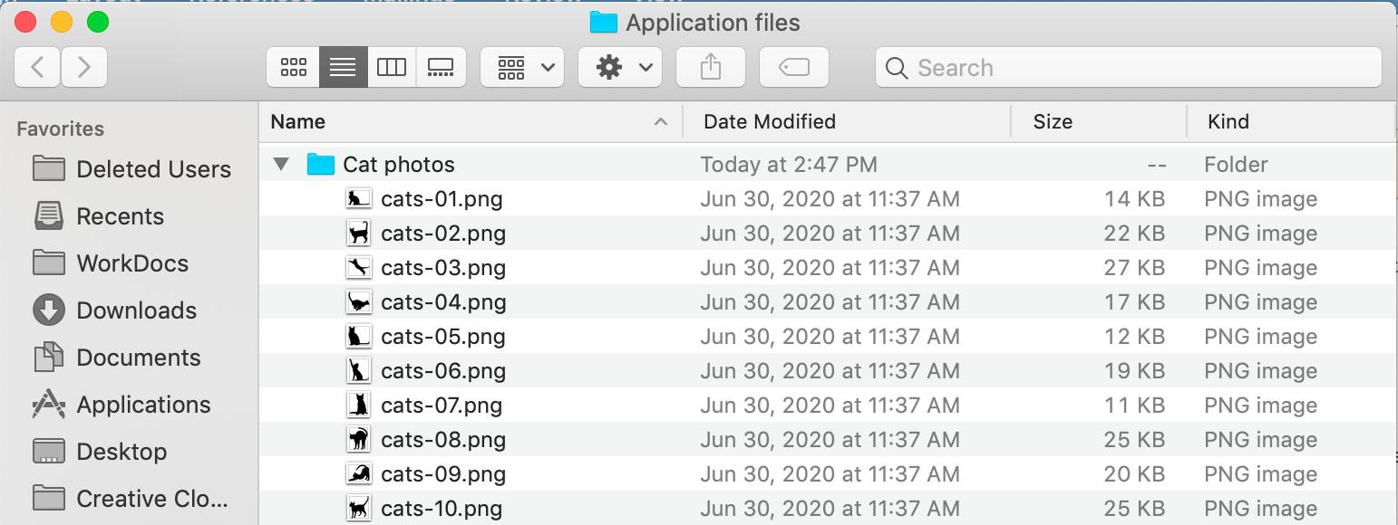 A file explorer window showing Cat photos are stored in a folder called Cat photos, which is stored in the folder Application files