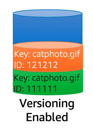 Diagram showing two versions of an object named catphoto.gif with different version IDs.
