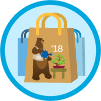 B2C Commerce Developer Certification Maintenance (Spring '18) icon