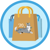 B2C Commerce Developer Certification Maintenance (Spring '20) icon