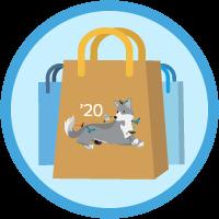 B2C Commerce Developer Certification Maintenance (Spring '20) icon