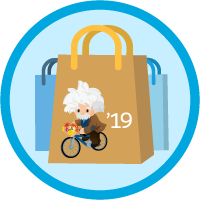 B2C Commerce Developer Certification Maintenance (Spring '19) icon