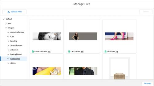 Page Designer Manager Files window.