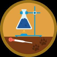 Business Experimentation icon